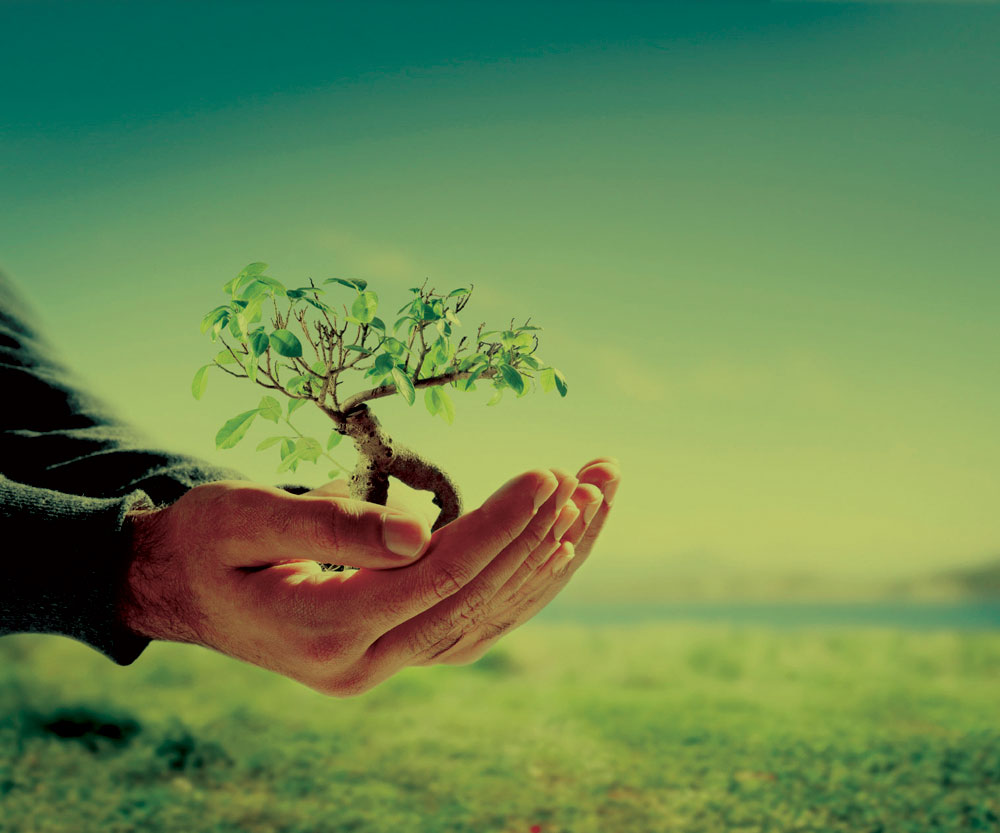 A limpeza que seu parceiro terceirizado fornece é sustentável? Veja como isso pode ser um diferencial competitivo